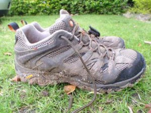 muddymoab1